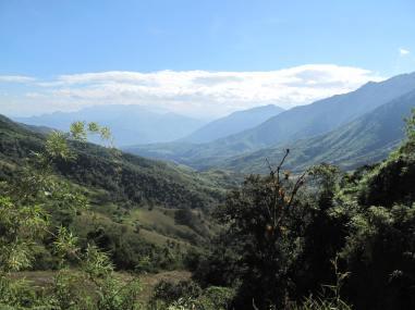 4. Bosque Nublado.JPG