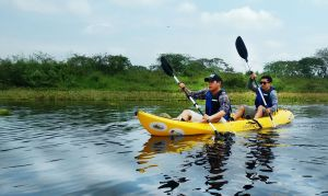 kayaks humedal